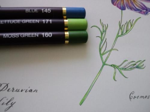 f:id:ofukusuke:20180115184551j:plain