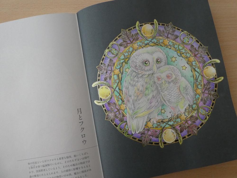 f:id:ofukusuke:20180213163824j:plain