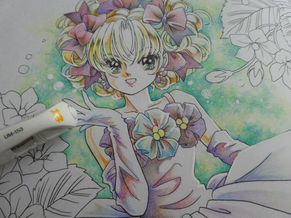 f:id:ofukusuke:20190211174715j:plain