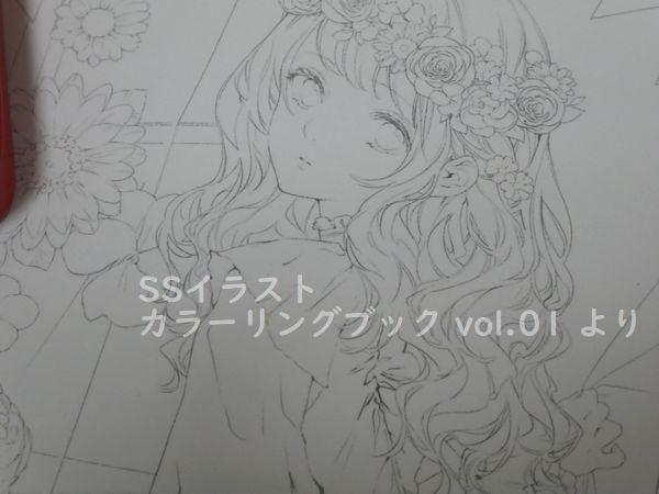 f:id:ofukusuke:20190302222536j:plain