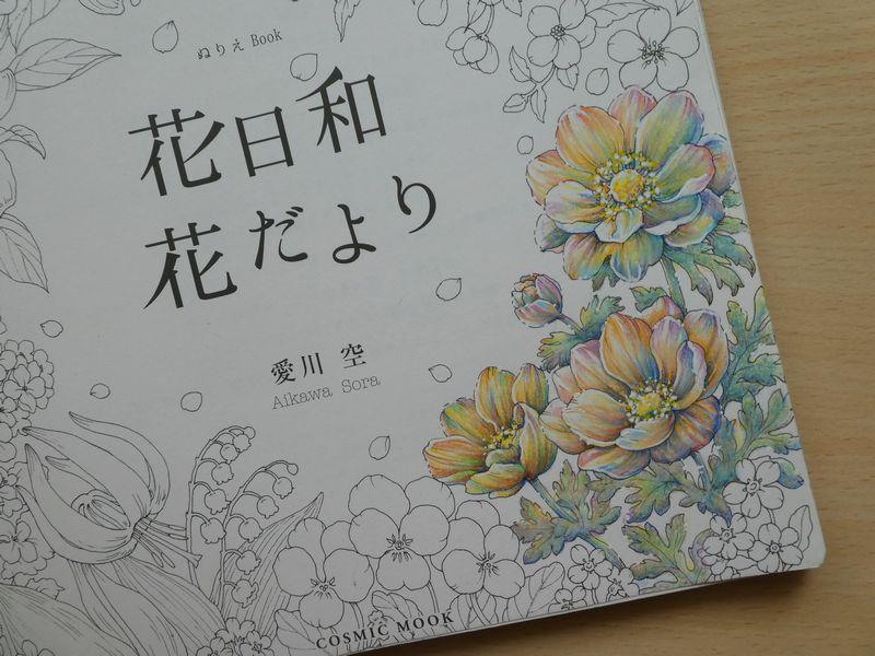 f:id:ofukusuke:20190603225909j:plain