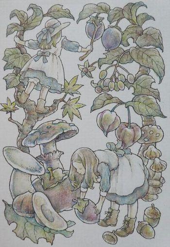 f:id:ofukusuke:20190615191034j:plain