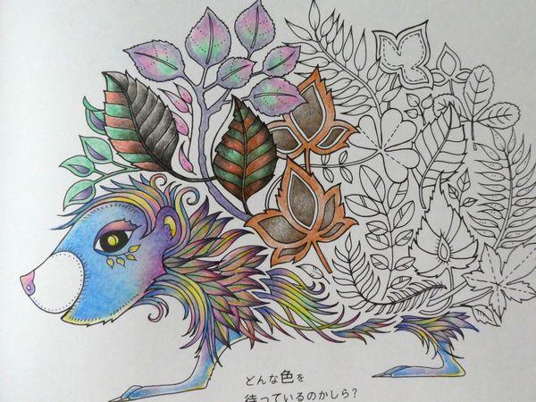 f:id:ofukusuke:20190905105746j:plain