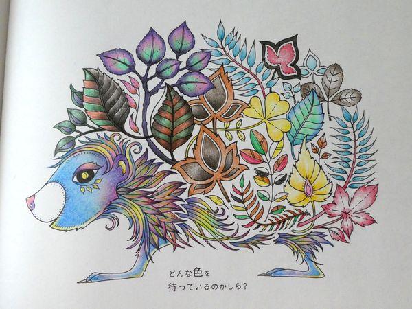 f:id:ofukusuke:20190905105826j:plain
