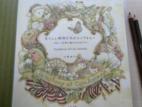 f:id:ofukusuke:20201027194536j:plain