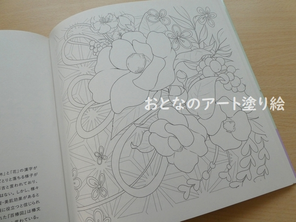 f:id:ofukusuke:20210304160947j:plain