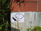 トカゲの安息所