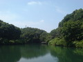 [公園]築池