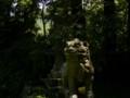 [神社][狛犬]飛鳥川上坐宇須多岐比賣命神社