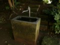 [神社][手水舎]米本根上神社