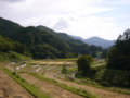 [風景]諏訪神社脇から新倉山、虫倉山の眺め