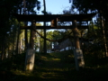 [神社][鳥居]成就神社 - 小川村成就