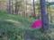 美ヶ原県民の森キャンプ場