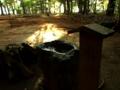[神社][手水舎]諏訪神社 - 八千代市八千代台西