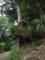印旛村岩戸宗像神社にて