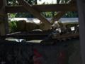 [神社][手水舎]厳島神社 - 南房総市白浜町白浜野島崎