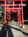 [神社][鳥居]厳島神社 - 南房総市白浜町白浜野島崎