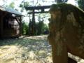 [神社][狛犬][鳥居]日枝神社 - 八千代市麦丸