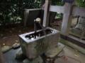 [神社][手水舎]八幡神社 - 千葉県八千代市新木戸