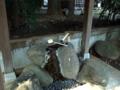 [神社][手水舎]葛谷御霊神社 - 東京都豊島区西落合