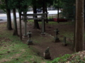 [神社][狛犬][鳥居]玉前神社 - 千葉県市原市高坂