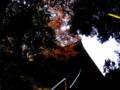 [神社]飯綱神社 - 千葉県八千代市ゆりのき台