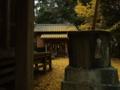 [神社]熊野神社 - 千葉県長生郡長南町蔵持