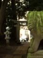 [神社][狛犬][鳥居]時平神社 - 千葉県八千代市萱田町