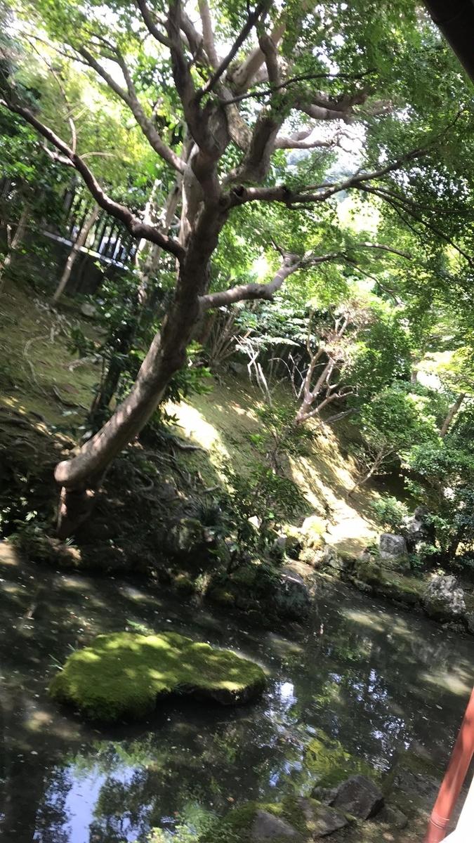 f:id:ogawa-sakeshop:20200812082135j:plain