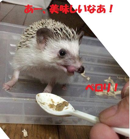 f:id:ogihara0308:20170701020118p:plain