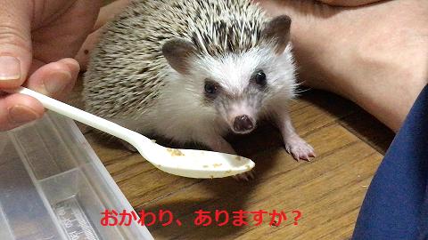f:id:ogihara0308:20170705012530p:plain