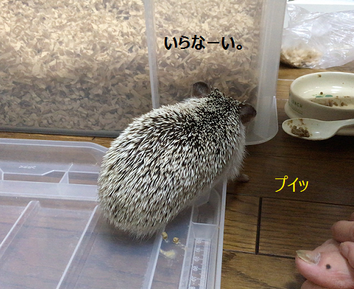 f:id:ogihara0308:20170720024629p:plain