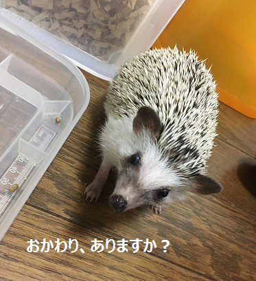 f:id:ogihara0308:20170725025552p:plain