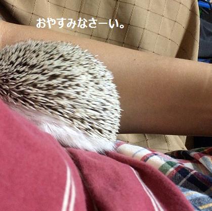 f:id:ogihara0308:20170729020558p:plain