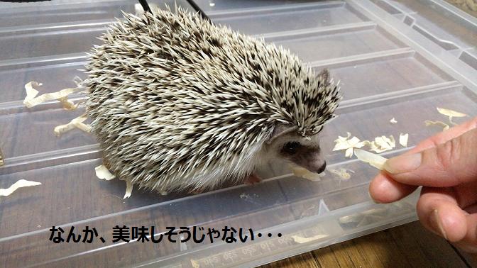 f:id:ogihara0308:20170905015623p:plain