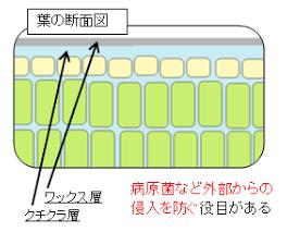 f:id:ogihara0308:20171022120635p:plain