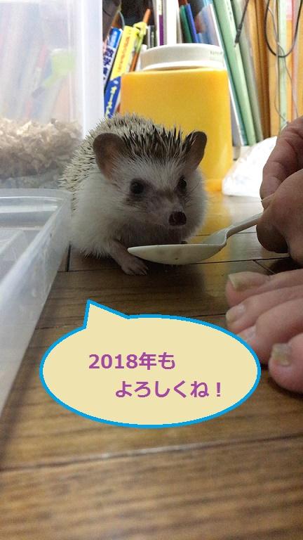 f:id:ogihara0308:20171231023949j:plain
