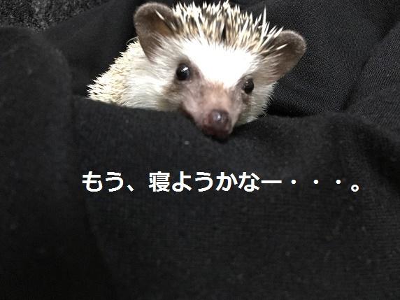 f:id:ogihara0308:20180118020411j:plain