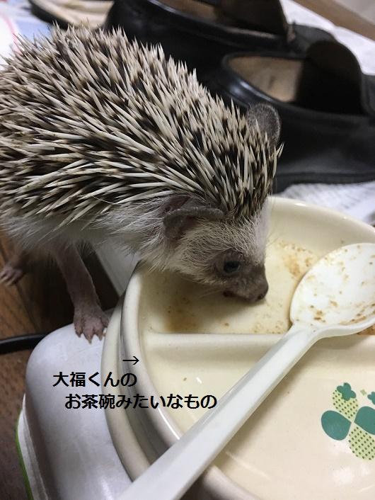 f:id:ogihara0308:20180123012042j:plain