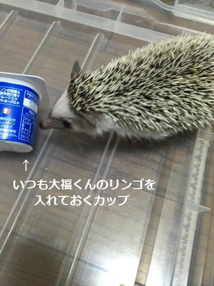 f:id:ogihara0308:20180123012116j:plain
