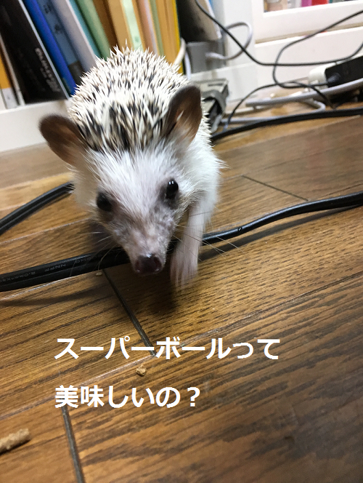 f:id:ogihara0308:20180315010338p:plain