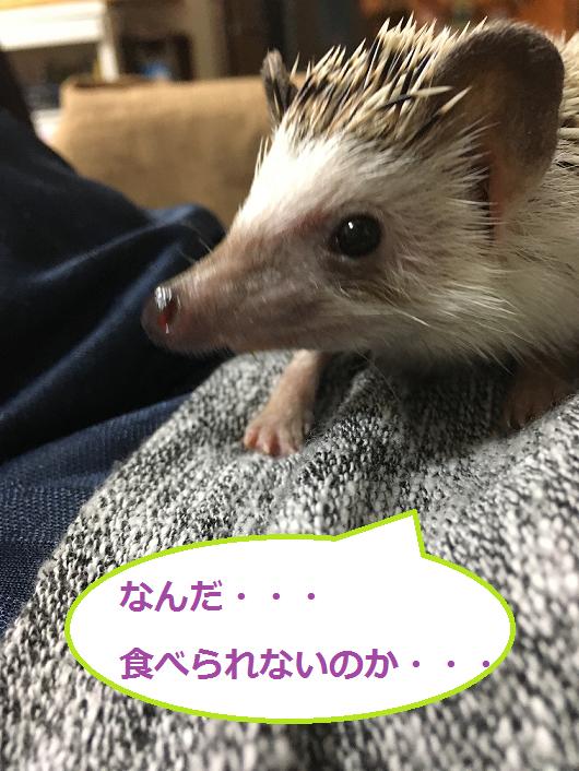 f:id:ogihara0308:20180315010917p:plain