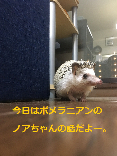 f:id:ogihara0308:20180509213053p:plain