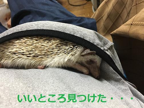f:id:ogihara0308:20180615212524p:plain
