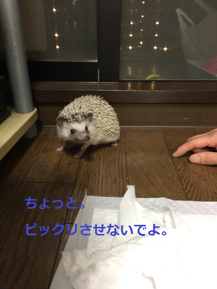 f:id:ogihara0308:20180615213015p:plain