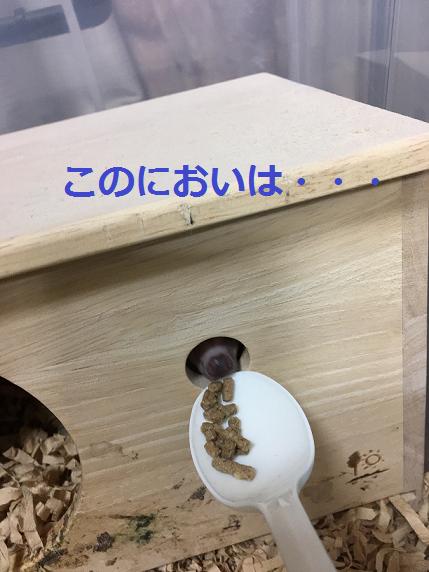 f:id:ogihara0308:20180625213118p:plain