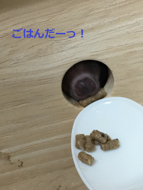 f:id:ogihara0308:20180625213142p:plain