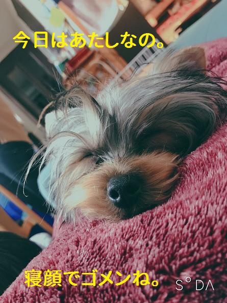 f:id:ogihara0308:20190408210451p:plain