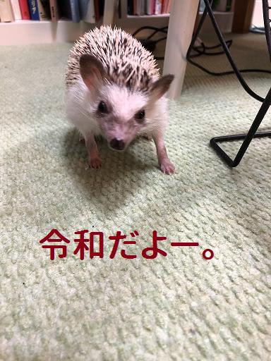 f:id:ogihara0308:20190506170726p:plain