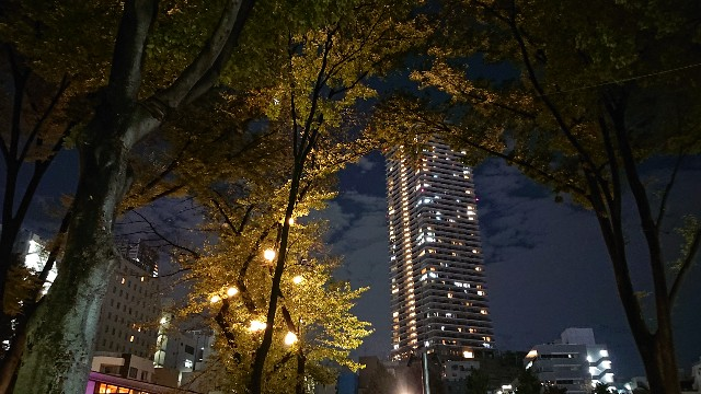 f:id:ogoesamurai:20180927234852j:image
